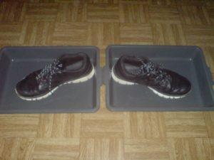 Дыжачьи кроссовки