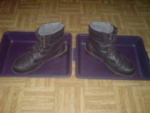 Дыжачьи ботинки